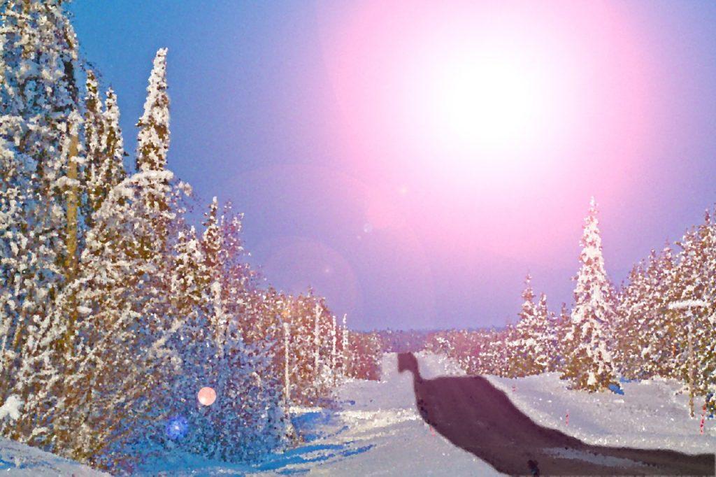 Kuvassa on luminen maisema ja tie.